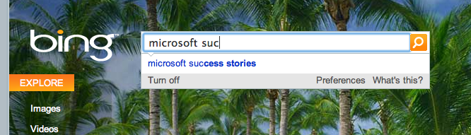 Microsoft success stories